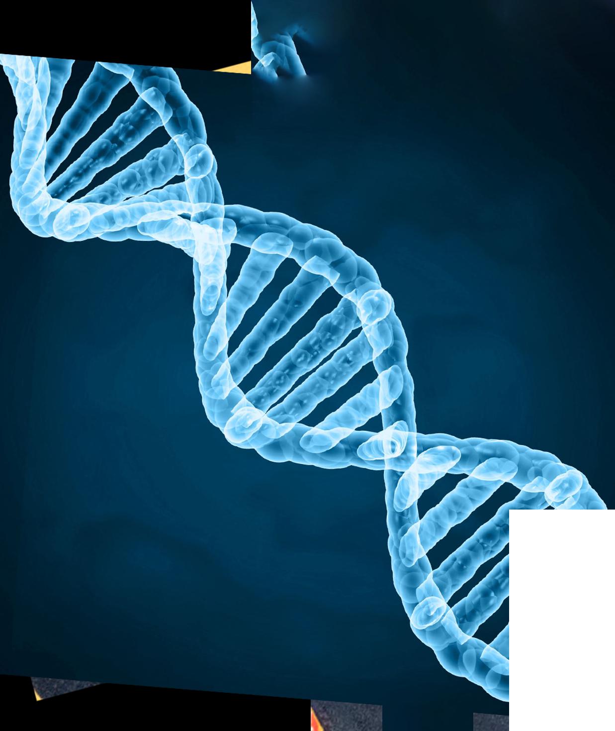 https://www.cervinfamilyoffice.com/wp-content/uploads/2021/06/Shape1_DNA.png
