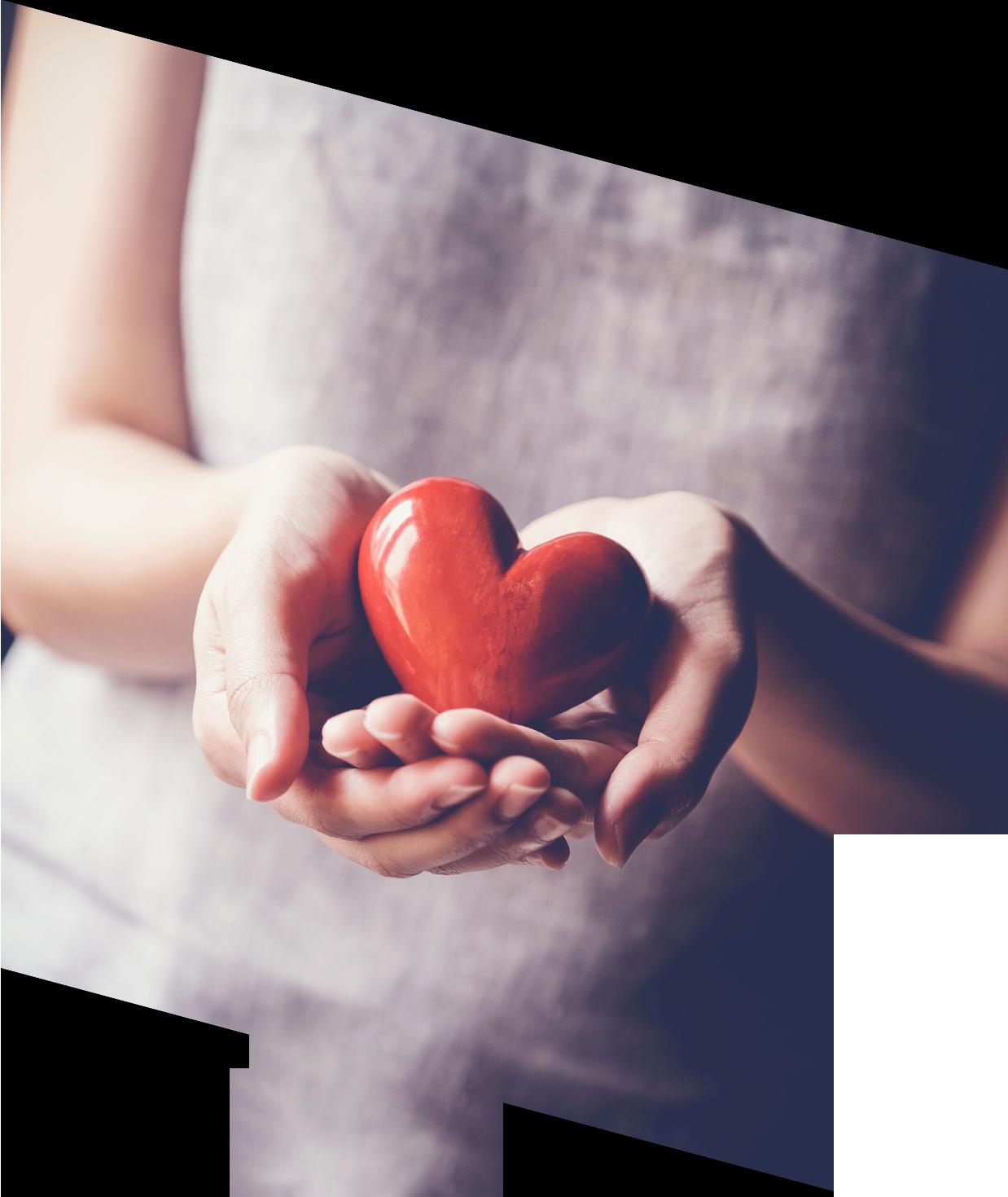 https://www.cervinfamilyoffice.com/wp-content/uploads/2021/06/philanthropy-Social-Impact-SEVICE-L-1.png